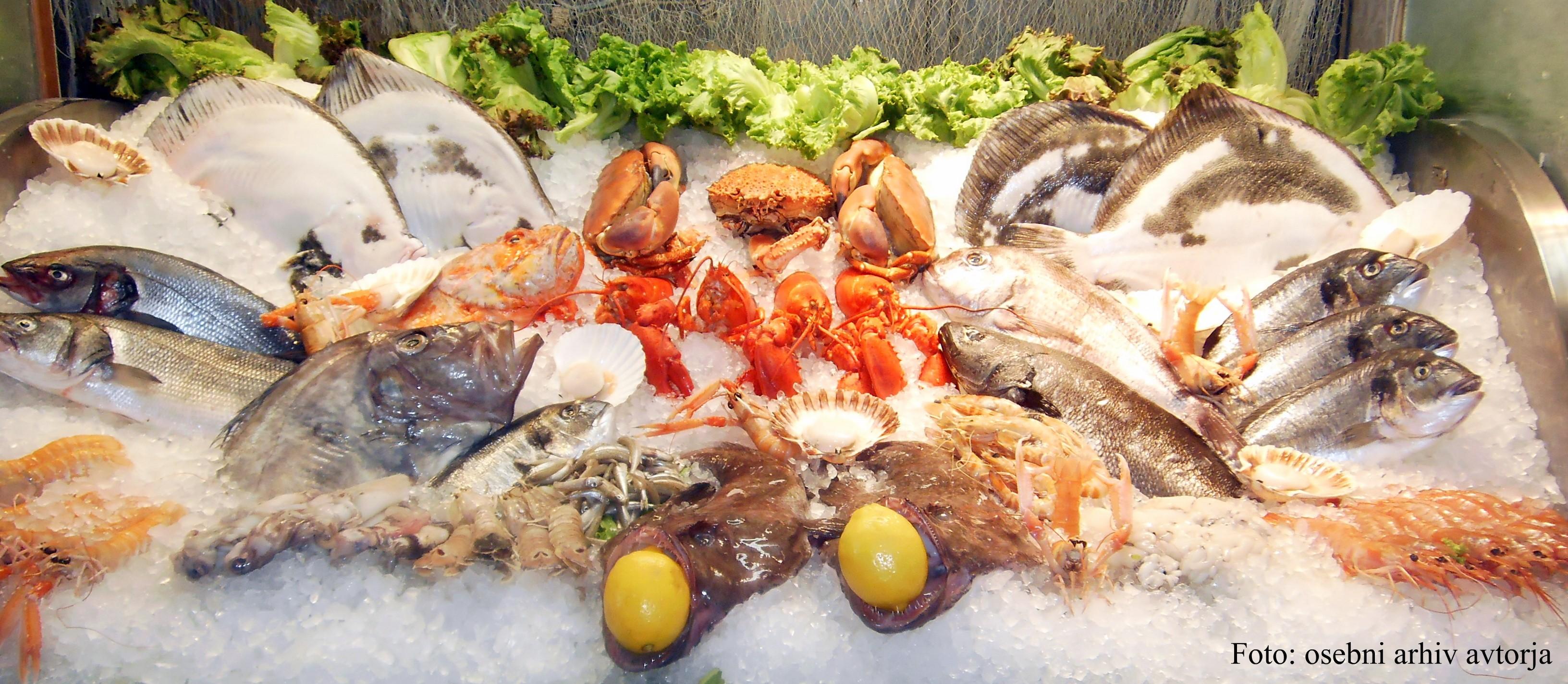 Sveže ribe in morski sadeži na ledu