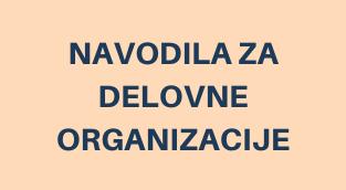 NAVODILA ZA DELOVNE ORGANIZACIJE