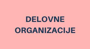 DELOVNE ORGANIZACIJE